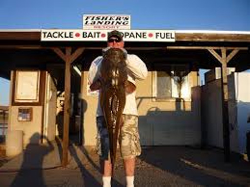 Slim Evans Memorial Catfish Derby
